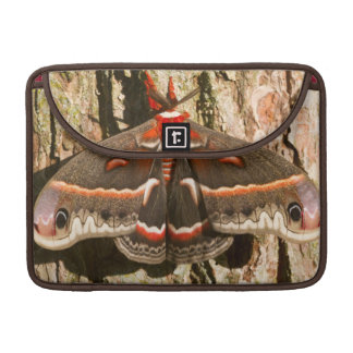 Cecropia Moth on tree trunk Sleeve For MacBooks