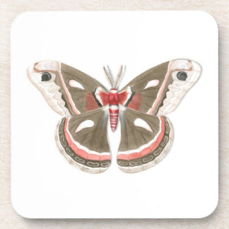 Cecropia Moth Plastic Coaster