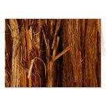 Cedar Bark Nature Card