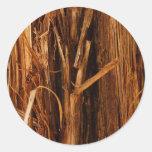 Cedar Bark Sticker