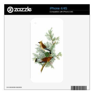 Cedar Bird John James Audubon Birds of America Decal For The iPhone 4