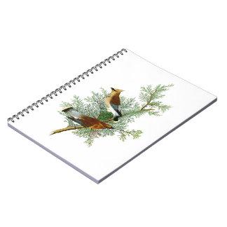 Cedar Bird John James Audubon Birds of America Notebook