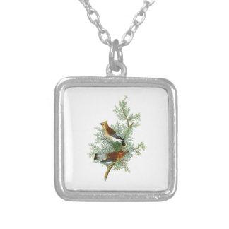 Cedar Bird John James Audubon Birds of America Square Pendant Necklace