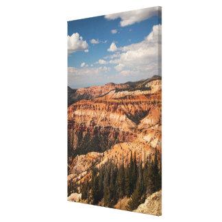 Cedar Breaks National Monument, Utah Canvas Print