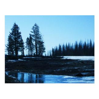 Cedar Breaks, Utah Postcard