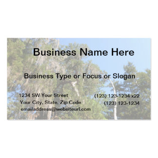 cedar covered in spanish moss business card
