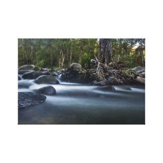 Cedar Creek Queensland Australia Canvas Print