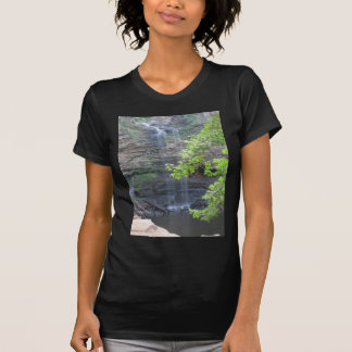 Cedar Falls Water Fall T-Shirt