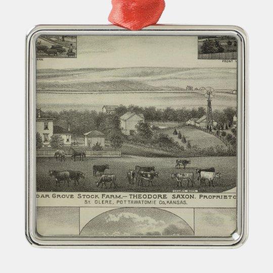 Cedar Grove Stock Farm and Roberts Ranch, Kansas Metal Ornament