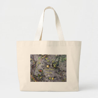 Cedar Key, Florida Beach Clams Large Tote Bag