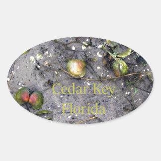Cedar Key, Florida Beach Clams Oval Sticker