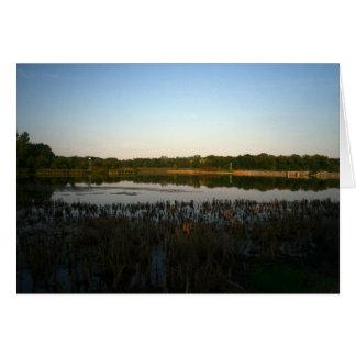 Cedar Lake Card