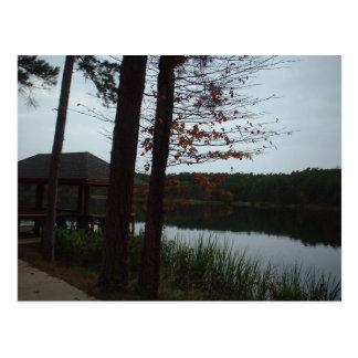 Cedar Lake Post Card