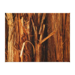 Cedar Textured Wooden Bark Look Canvas Print