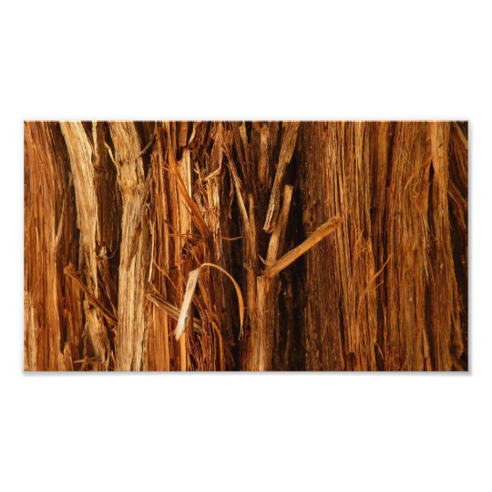 Cedar Textured Wooden Bark Look Photo Print