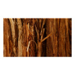 Cedar Textured Wooden Bark Look Poster