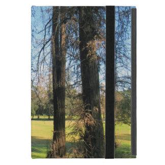 Cedar Trees Griffith Park photograph 1 Case For iPad Mini
