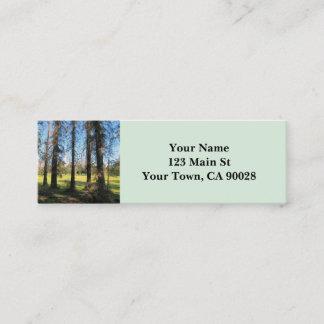Cedar Trees Griffith Park photograph 1 Mini Business Card