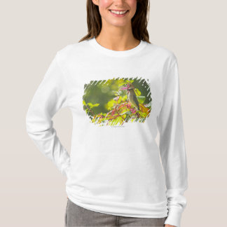 Cedar Waxwing  And Poke Berries On A Tree T-Shirt