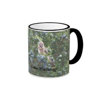 Cedar Waxwing Bird Ringer Mug
