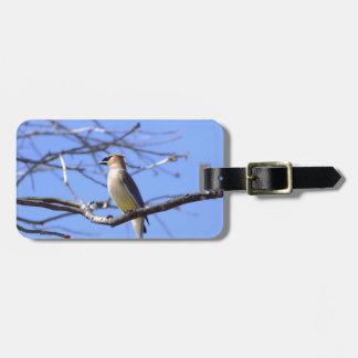 Cedar waxwing bird watching design bag tag