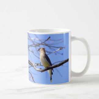 Cedar waxwing bird watching design coffee mug