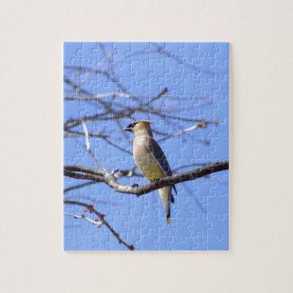 Cedar waxwing bird watching design jigsaw puzzle