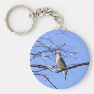 Cedar waxwing bird watching design keychain