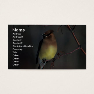 Cedar waxwing business card