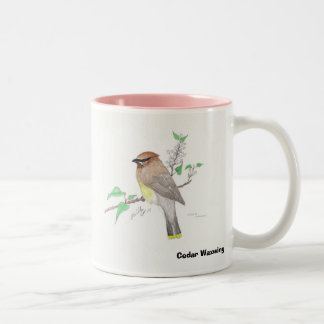 Cedar Waxwing, Cedar Waxwing Two-Tone Coffee Mug