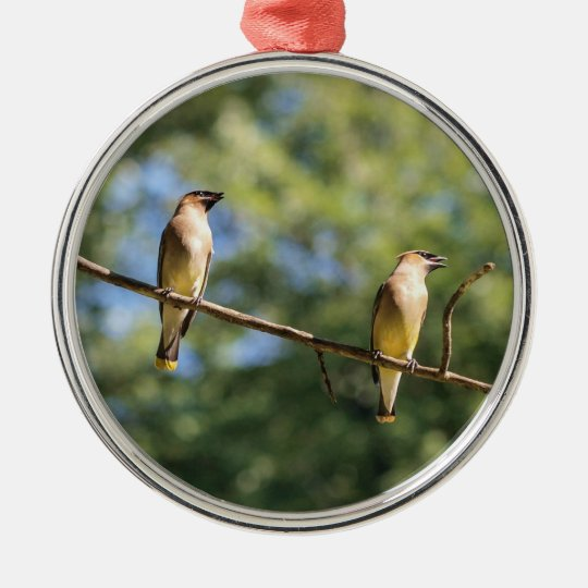 Cedar Waxwing Metal Ornament