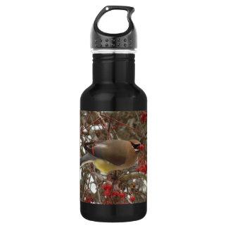 Cedar Waxwing Water Bottle