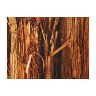Cedar Wood Textured Bark Look Canvas Print
