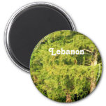 Cedars of Lebanon Fridge Magnets