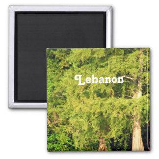 Cedars of Lebanon Fridge Magnet