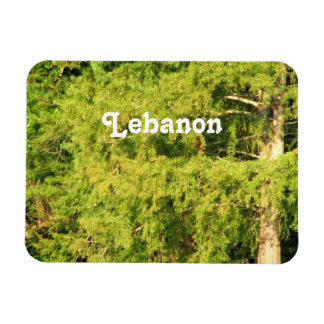 Cedars of Lebanon Magnets