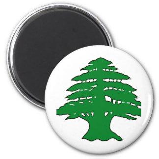 Cedro libanés imán redondo 5 cm