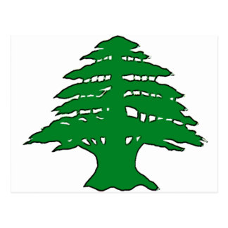 Cedro libanés tarjetas postales