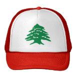 Cedro verde de Líbano Gorros