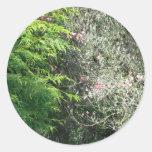 Cedro y Dogwood rosado Etiqueta Redonda