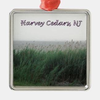 Cedros de Harvey, NJ:  Bahía con la hierba Adorno Cuadrado Plateado