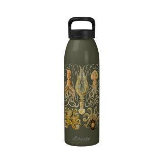 Cefalópodos del vintage botella de agua reutilizable