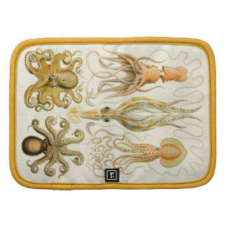 Cefalópodos del vintage planificador