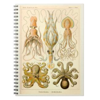 Cefalópodos del vintage libreta espiral