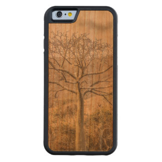Ceiba Tree at Dry Forest Guayas District - Ecuador Carved Cherry iPhone 6 Bumper Case
