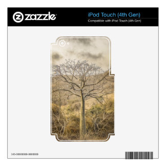 Ceiba Tree at Forest Guayas Ecuador iPod Touch 4G Skin