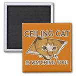 Ceiling Cat is watching you! 2 Inch Square Magnet