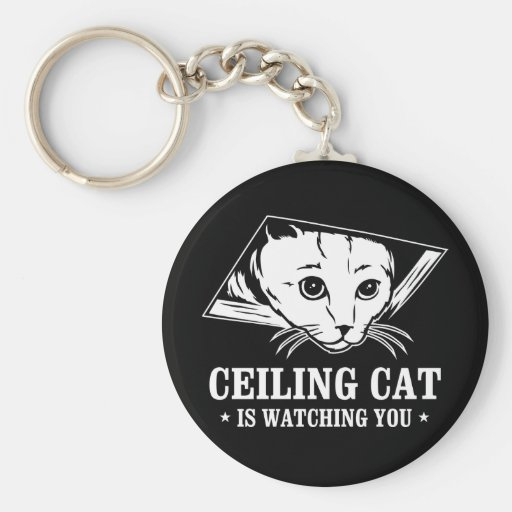 Ceiling Cat is Watching You Basic Round Button Keychain