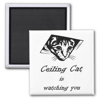 Ceiling Cat is Watching You 2 Inch Square Magnet