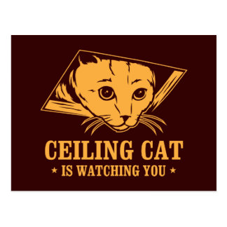 Ceiling Cat is Watching You Postcard